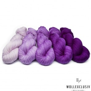 WOLLEXCLUSIV COLOR KIT ∣ GRAPES