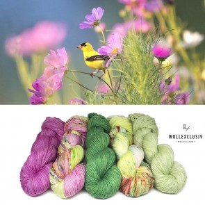 WOLLEXCLUSIV COLOR KIT ∣ FLOWERY MEADOW