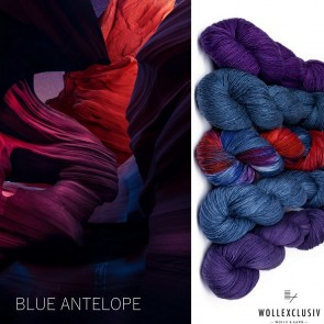 WOLLEXCLUSIV COLOR KIT ∣ BLUE ANTELOPE