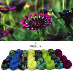 YARN MIX ∣ CAPE DAISIES
