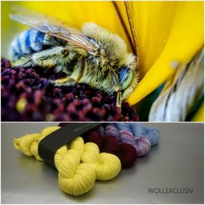 WOLLEXCLUSIV COLOR KIT ∣ DILIGENTLY