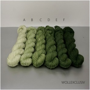 COLORWAY │WOLLE FARBVERLAUF │ FOREST SPIRIT