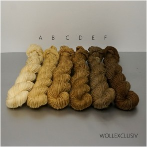 COLORWAY │ WOLLE FARBVERLAUF │ WALNUT BROWN