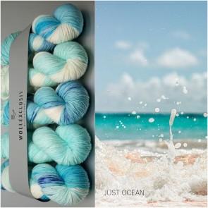 WOLLEXCLUSIV COLOR KIT ∣ MERINO X SOCKS 6ply ∣ JUST OCEAN
