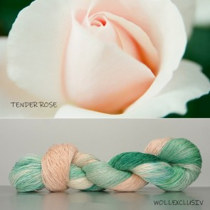 LINI LACE ∣ TENDER ROSE