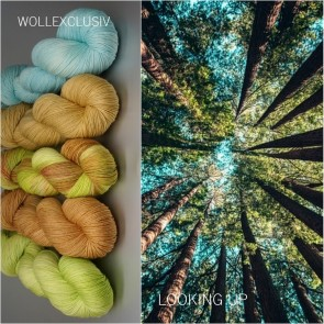 WOLLEXCLUSIV COLOR KIT ∣ MERINO X FINE∣ LOOKING UP