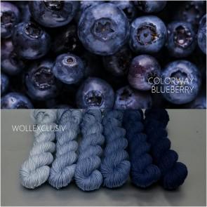 COLORWAY ∣ WOLLE FARBVERLAUF ∣ BLUEBERRY