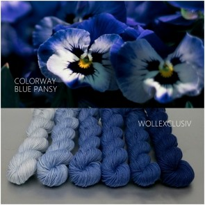 COLORWAY ∣ WOLLE FARBVERLAUF ∣ BLUE PANSY