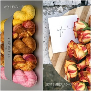 WOLLEXCLUSIV COLOR KIT ∣ MERINO X SOCKS 6ply ∣ SEPTEMBER ROMANCE