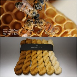 COLORWAY │ WOLLE FARBVERLAUF │ HONEY BEE