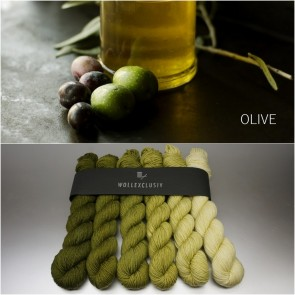 COLORWAY│ WOLLE FARBVERLAUF │ OLIVE