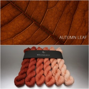 COLORWAY ∣ WOLLE FARBVERLAUF ∣ AUTUMN LEAF